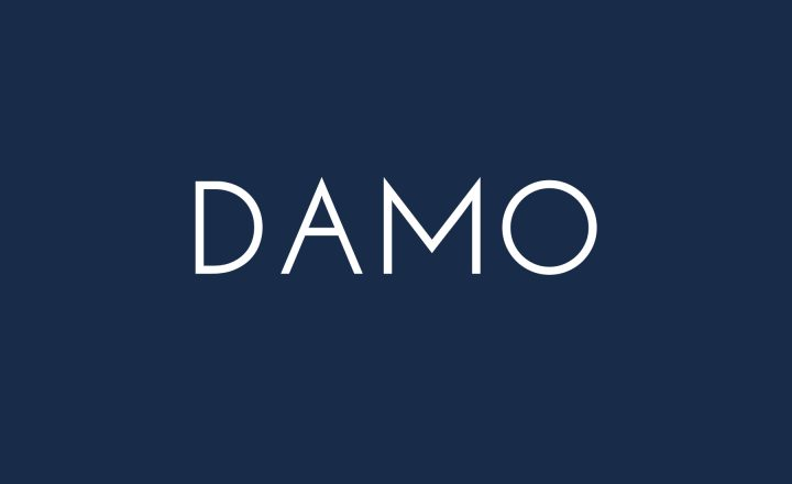 'Damo' written in white font on a navy blue background.