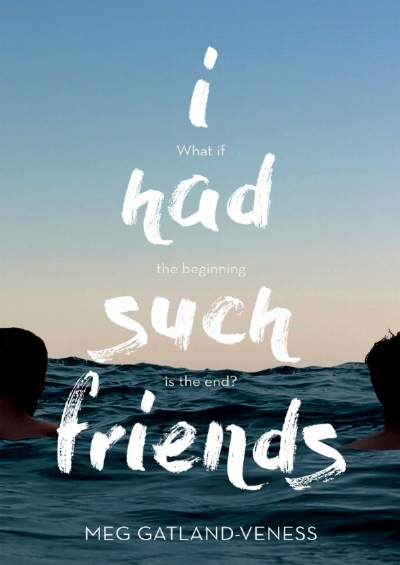 The book cover of 'I had such friends'