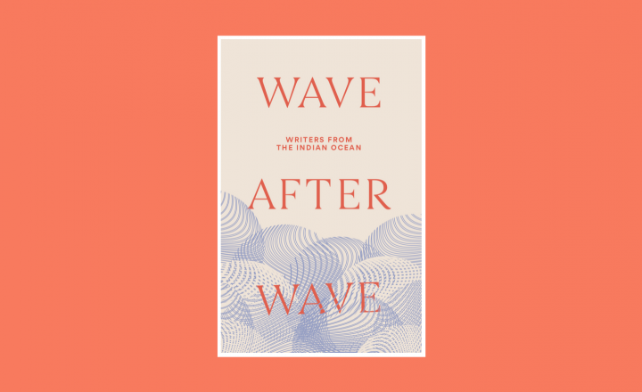 The cover of 'Wave after Wave'. It is cream with blue circular waves below. The title is bold in capital letters and bright orange lettering.
