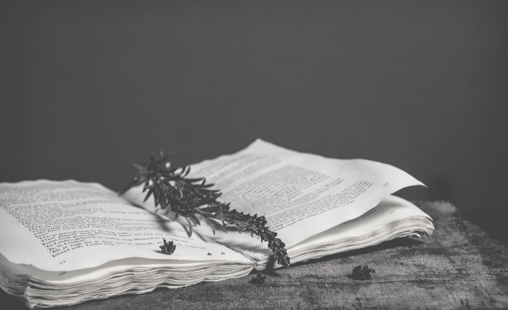 A black and white image of a book open on a table