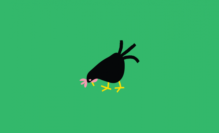 An illustration of a chicken on a green background