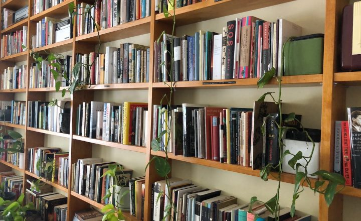 A photograph of a well stocked book shelf with a couple of potted plants sitting on the shelves