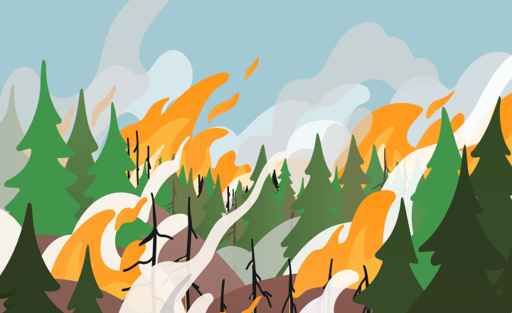 Illustration of a forest on fire