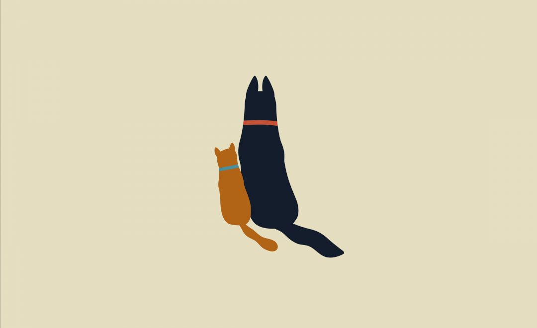 An illustration of a cat and a dog sitting side by side and facing away from the viewer. They look like close friends.