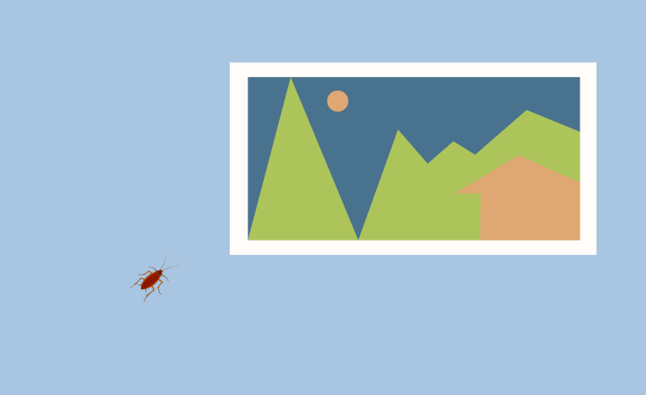 Illustration of a wall with a framed picture and a cockroach