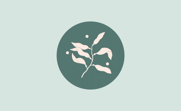 A graphic illustration of sea kelp in a soft peach colour. It is in a deep green circle and the outside is a soft mint green.