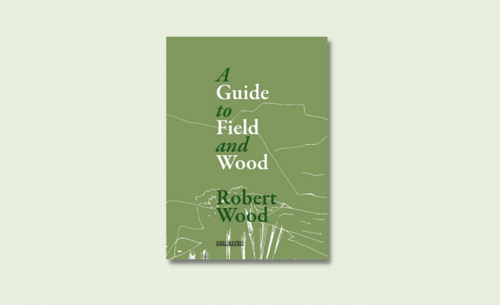 A graphic illustration of a book against a soft green background. The book is a dark olive green and the title reads 'A Guide To Field and Wood'